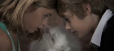 the-gentleness-of-rabbits